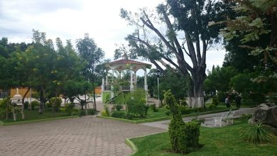 Photo of PARQUE CENTRAL DE XOXOCOTLÁN