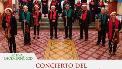 Photo of Lleva Seculta mensaje de amor y aliento a las familias oaxaqueñas con conciertos virtuales