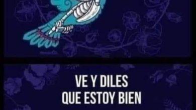 Photo of EL DÍA QUE ME FUI